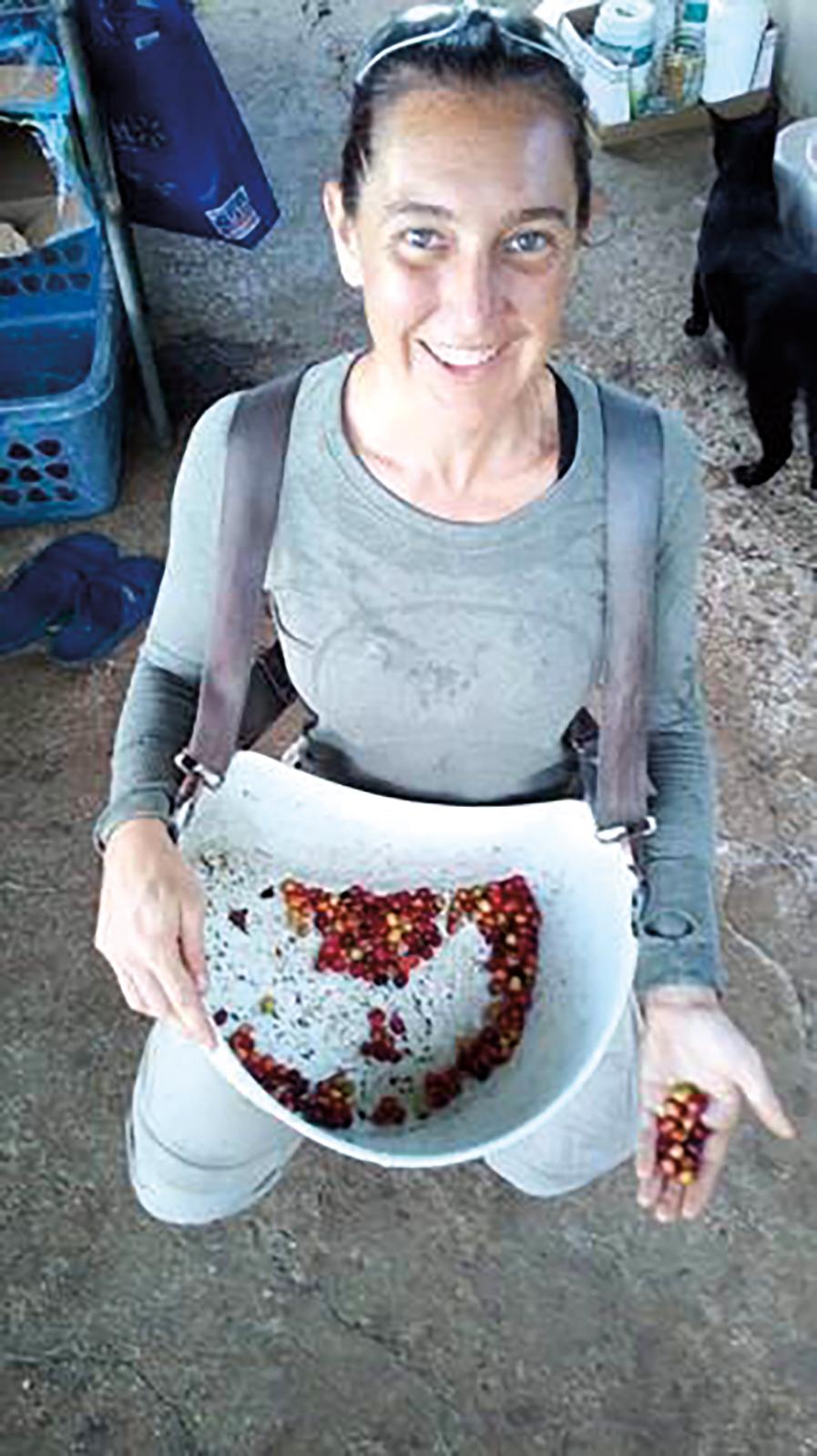 Steph Sorowka '06 picking coffee beans at La Buena Vida, Captain Cook, Hawaii.