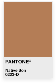 James Baldwin Pantone.jpg