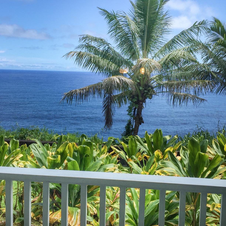 The Tropical Dreams Room at The Palms Cliff House Inn, Honomu, Hawaii (11 of 15).jpg