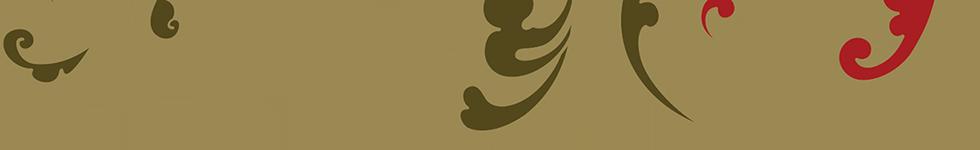 JF-cover-pattern-alt-bottom-trans.png