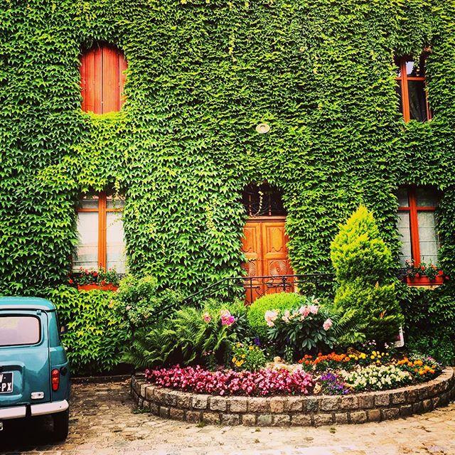 Beautiful Ambonnay 🍾🥂🇫🇷 #grandcru #champagne #ambonnay #france @la2champagne