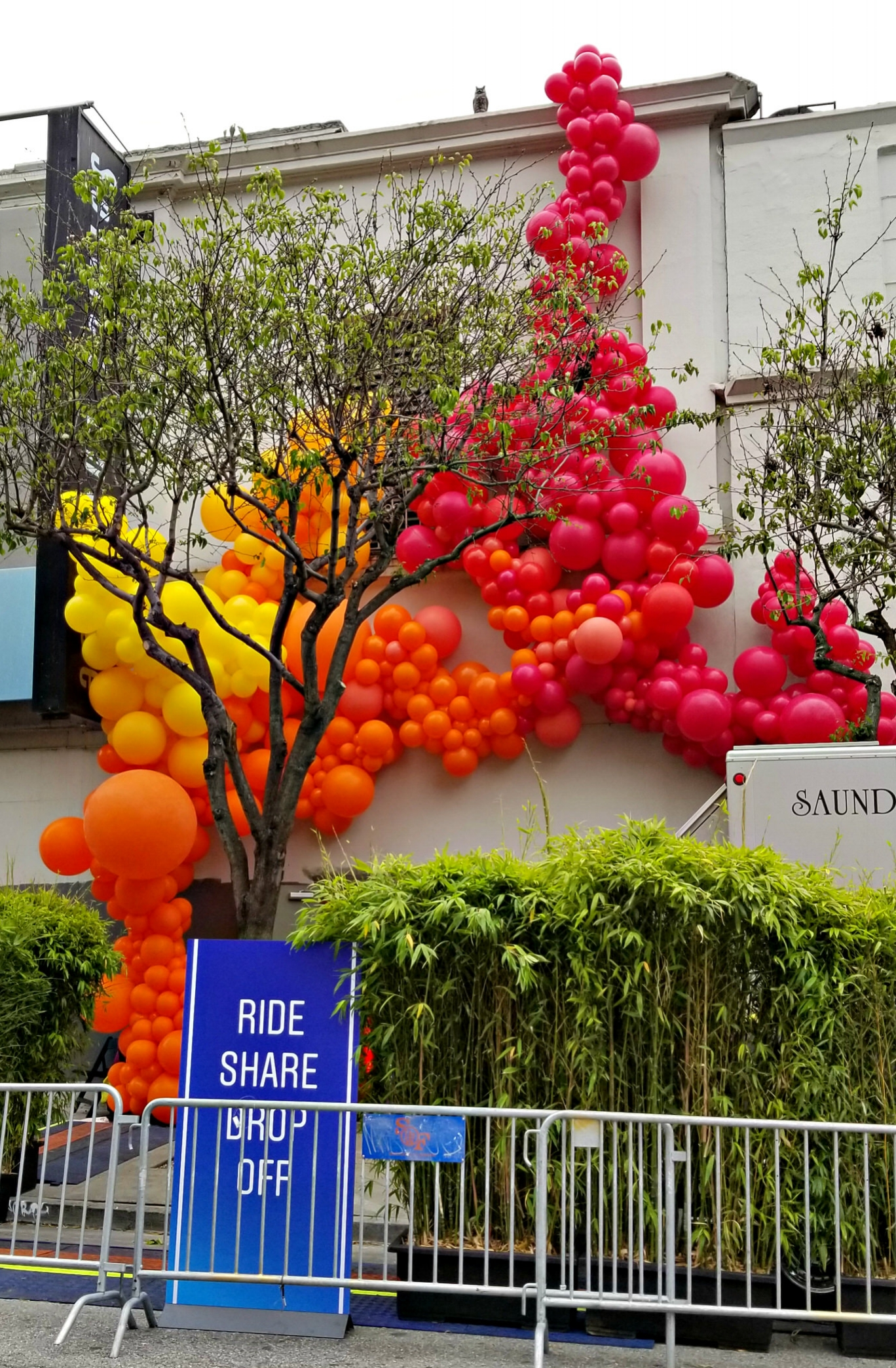 IG TV Install Zim Balloons -SF Balloon Installation Garlands.jpg