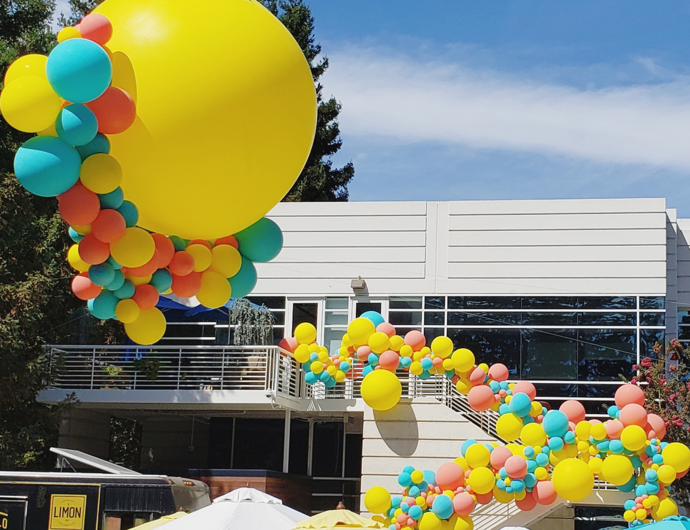 Google Ventures BBQ Organic Balloon Garland  Balloons Mountain View - Zim Balloons -.jpg