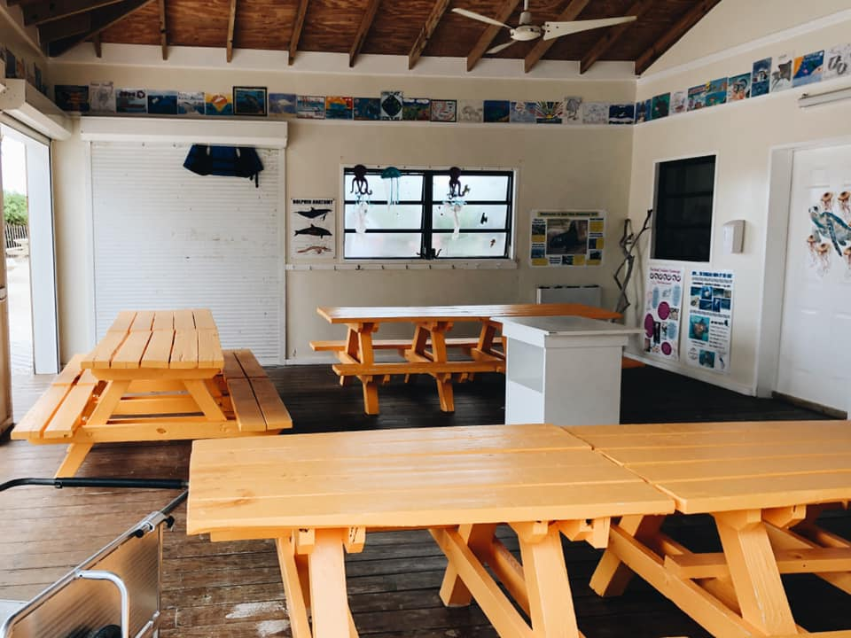 This is the learning center where children create crafts, learn about marine life and it's environment and of course, have snacks and drinks!