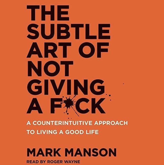 the subtle art of not giving a fuck_feminest book club_nikkiricks.jpg