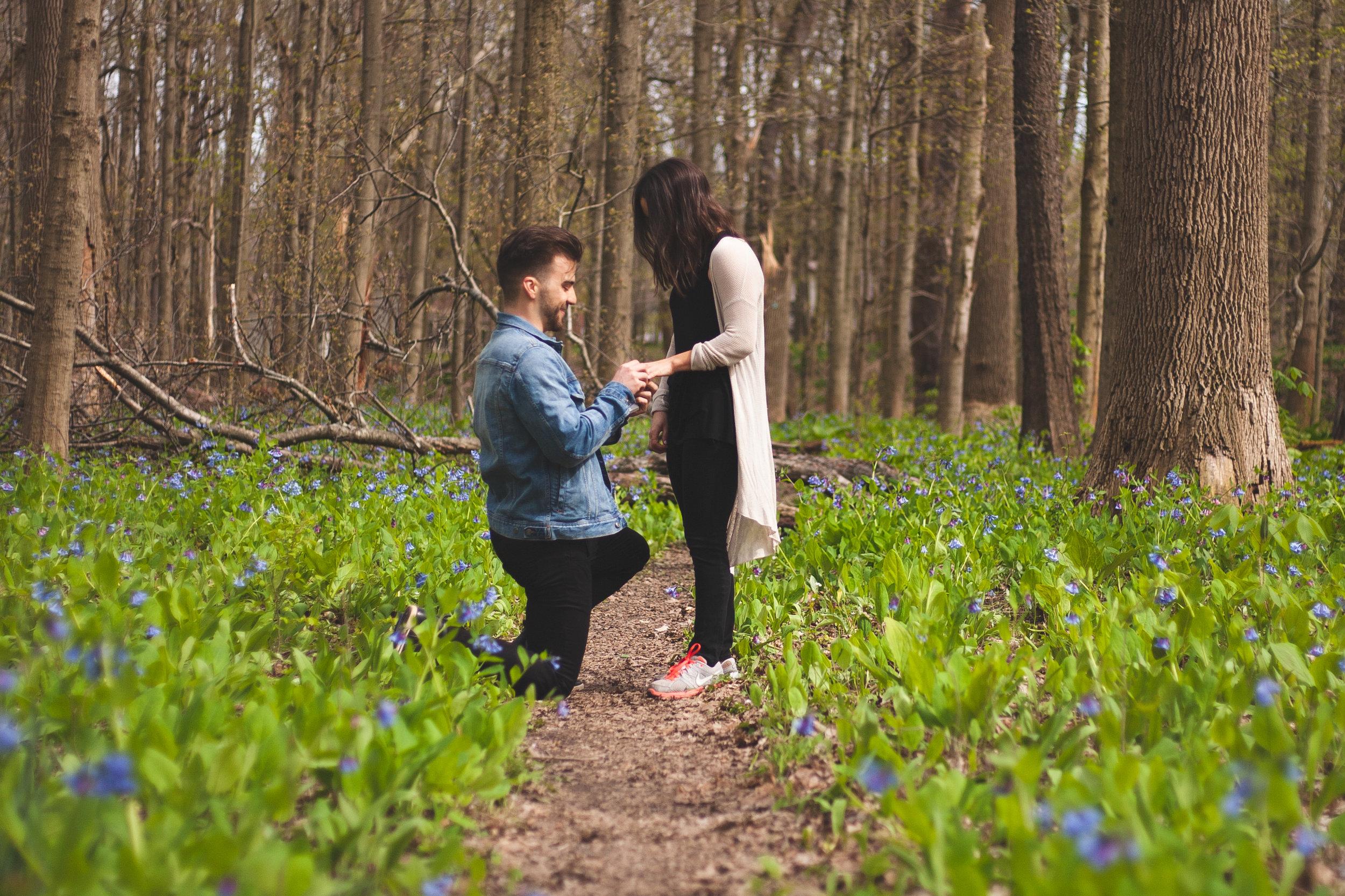 Mark & Kara - Surprise Engagement