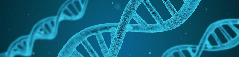 Banner-DNA.jpg