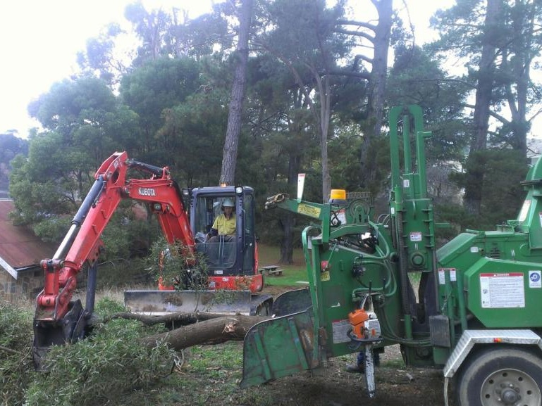 "Now with the addition of the ""Big Beast"", the largest chipper in Victoria taking logs up to 22 inches. Tree Top Tower Hire can tackle the biggest tree removal and large scale land clearing jobs, for domestic, commercial and industrial situations.  etc etc etc etc etc etc etc etc etc etc etc etc etc etc etc etc etc etc etc etc etc etc etc etc etc etc etc etc etc etc etc etc etc etc etc etc etc etc etc etc etc etc etc etc etc etc etc etc etc etc etc etc etc etc etc etc etc etc etc etc etc etc etc etc etc etc etc etc etc etc etc etc etc etc etc etc etc etc etc etc etc etc etc etc etc etc etc etc etc etc etc etc etc etc etc etc etc etc etc etc etc etc etc etc etc etc etc etc etc etc etc etc etc etc etc etc"