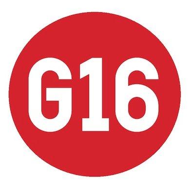 G16 logo.jpg