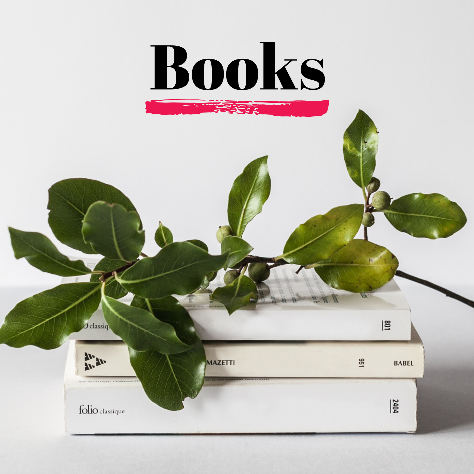 NotSoItGirl_Portfolio_Books2.png