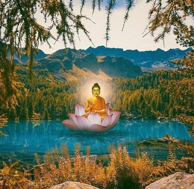 Teacher Training Spring 2020Feb 21-Apr 5 - Wanna teach or deepen your practice? Join Liberation Yoga's Teachers Training.Learn more ➝