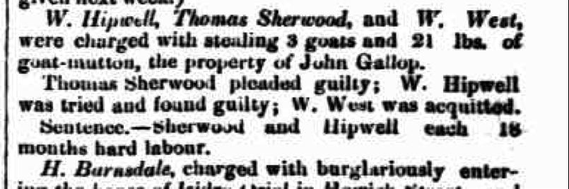 Perth Gazette; Perth Police Court; 17 May 1861