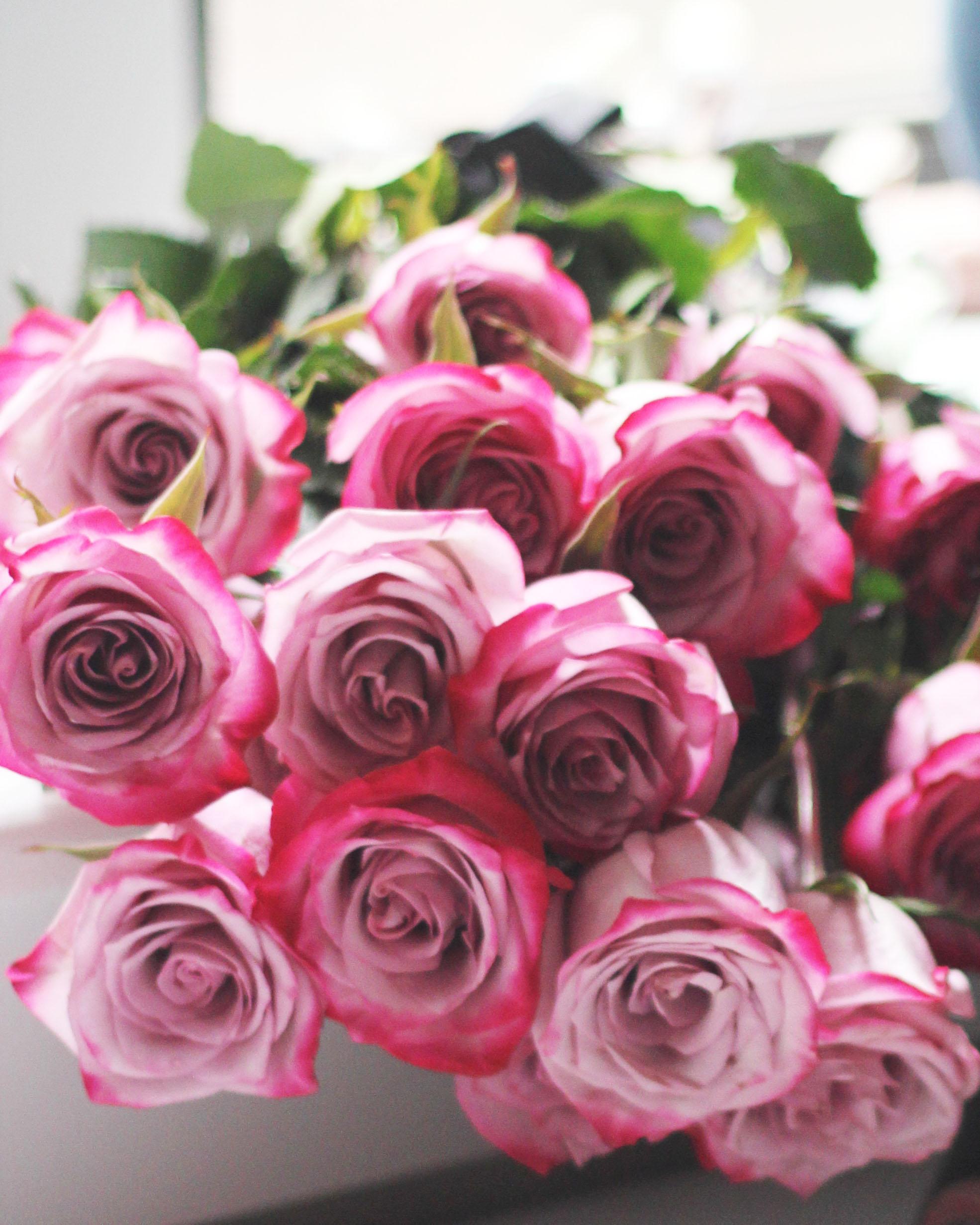 Roses-1.jpg