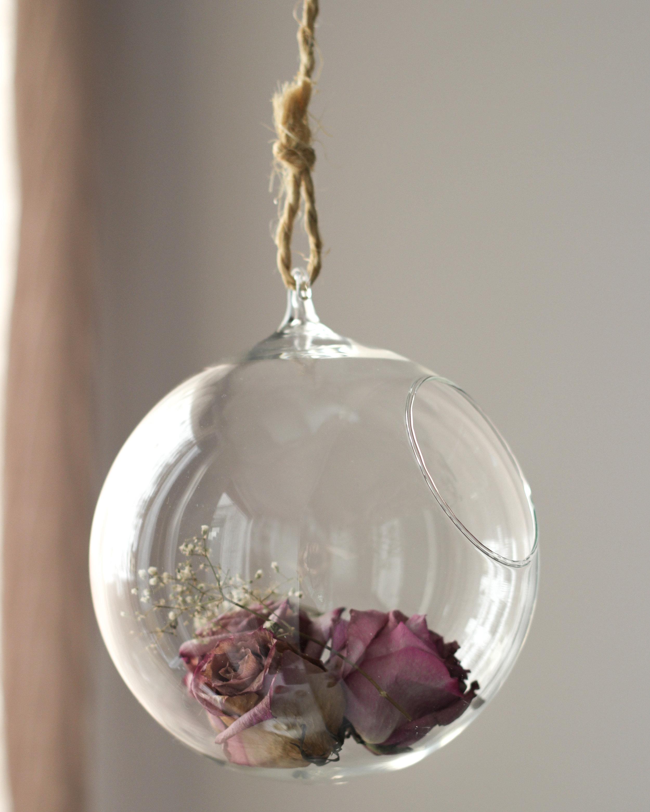 Roses-4.jpg