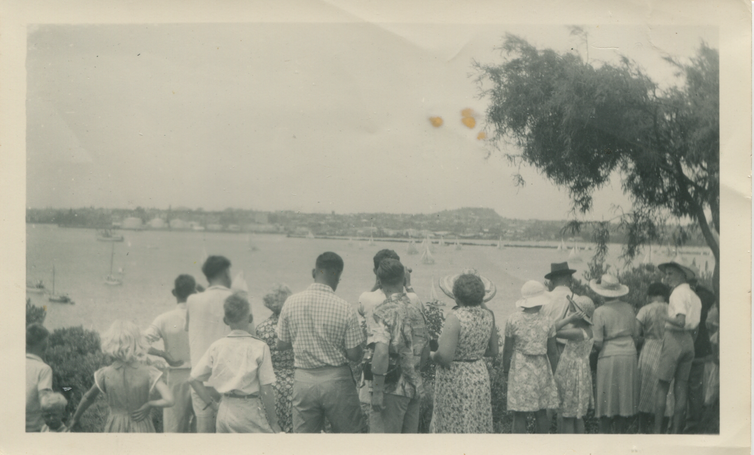 A crowd stands on Northcote Point to watch the Regatta. Image credit: Cathy Fraser. Early 1950s.