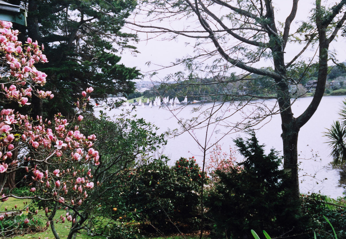 Lake Pupuke taken from a bedroom window on Hurstmere Road. Image credit Angela Te Wiata. 2000.