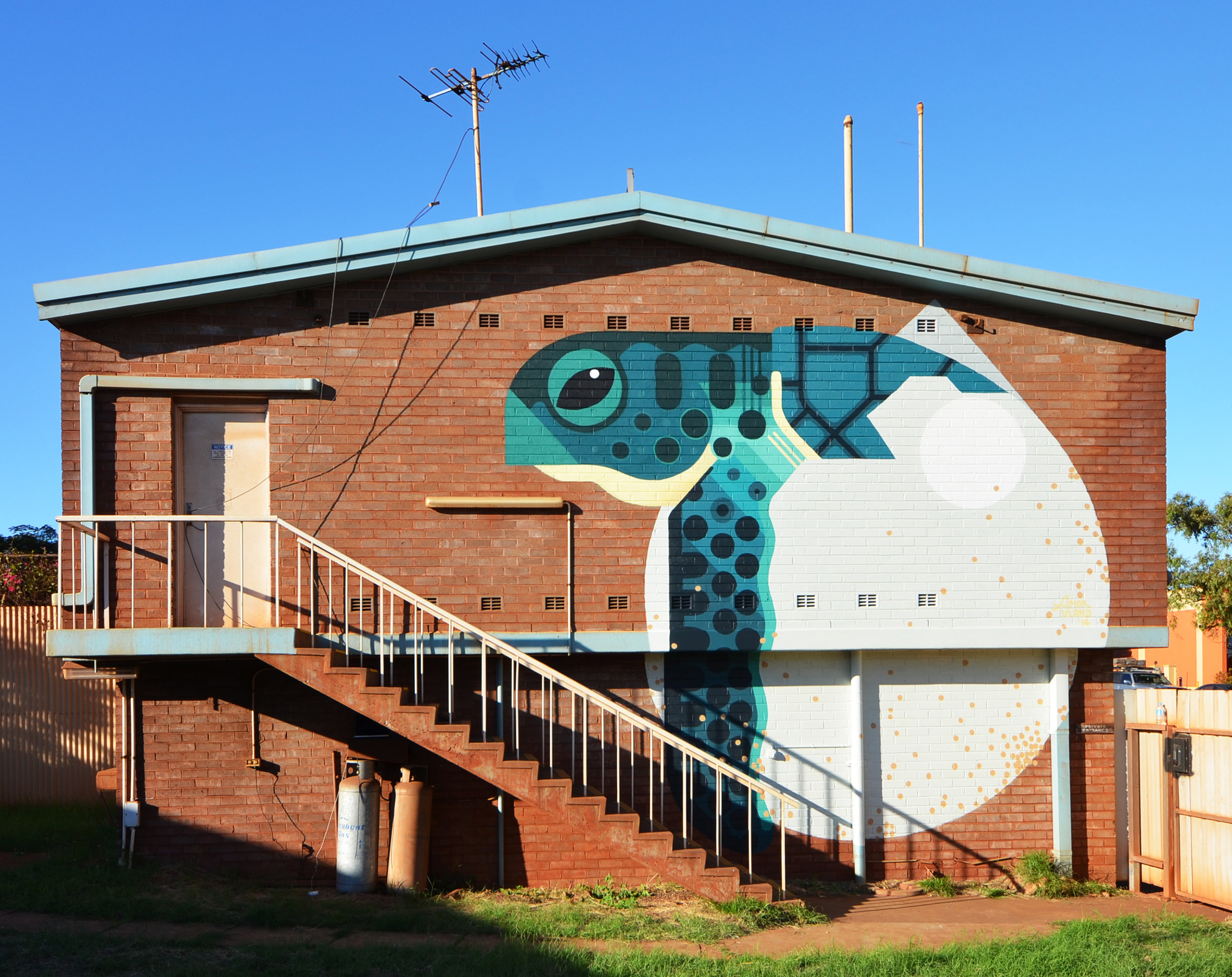 Port Hedland, WA Australia 2015. 'Flatback Turtle Hatchling' commissioned by FORM WA