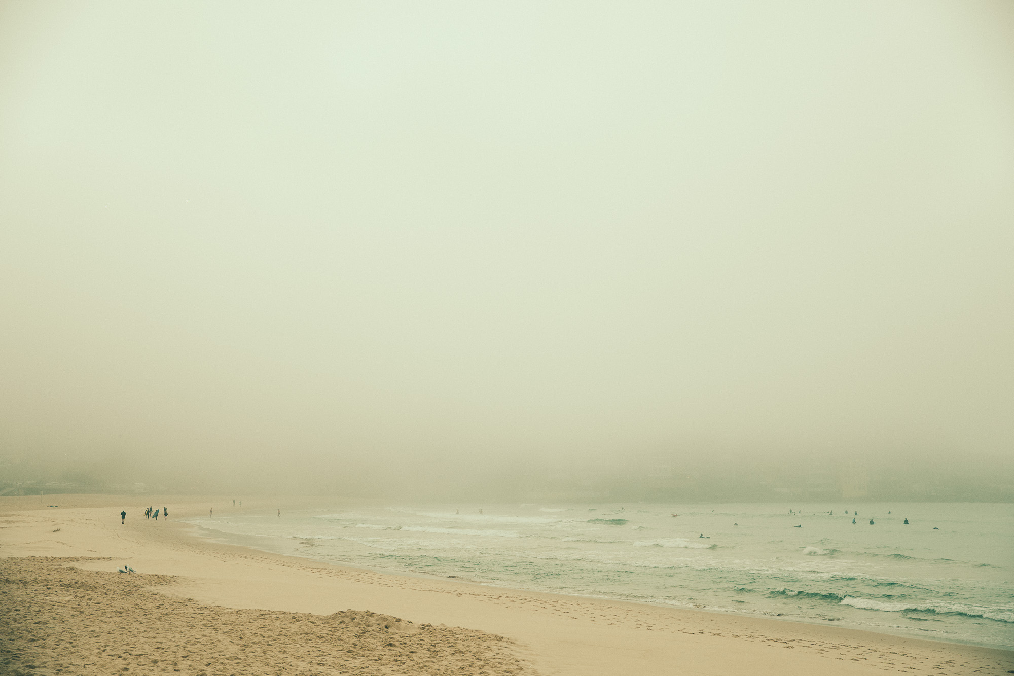 Bondi Fog-5026.jpg
