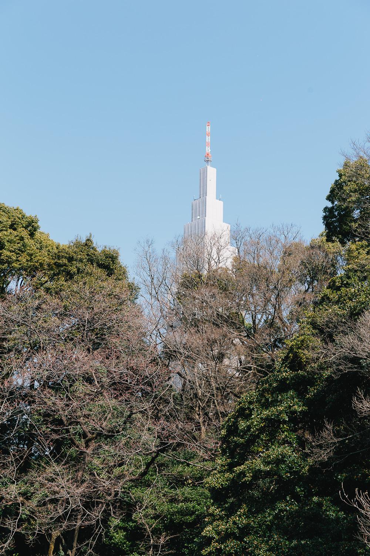 Japan-2641.jpg