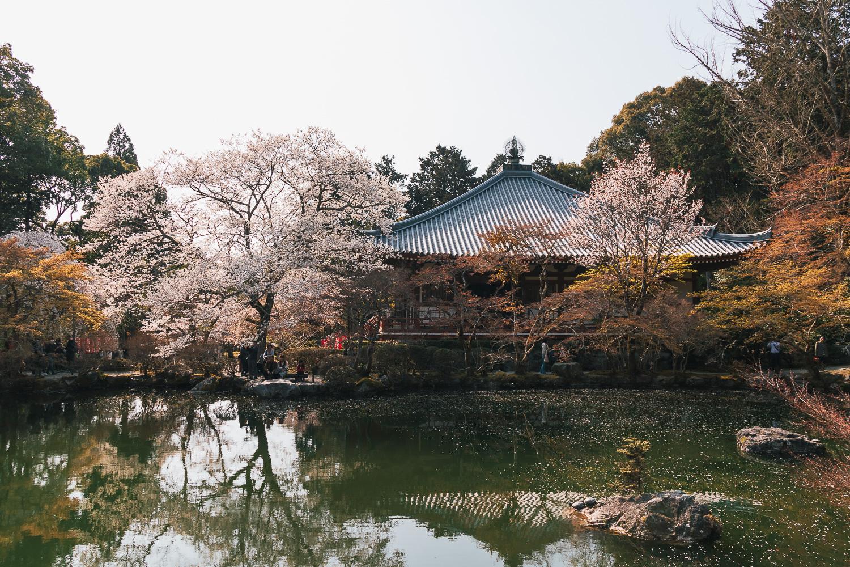 Japan-4006.jpg