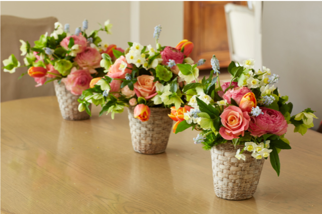 florals 8.png