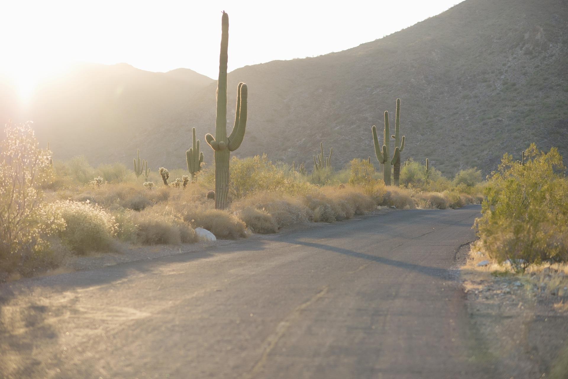 desert-2723961_1920.jpg
