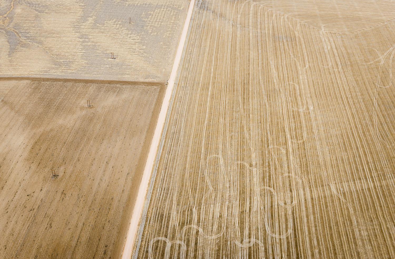 Harvest Paths, Hoyt, CO, 2013