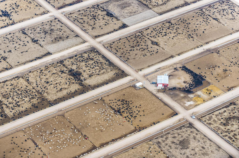 Red Pails, Yuma, CO, 2013