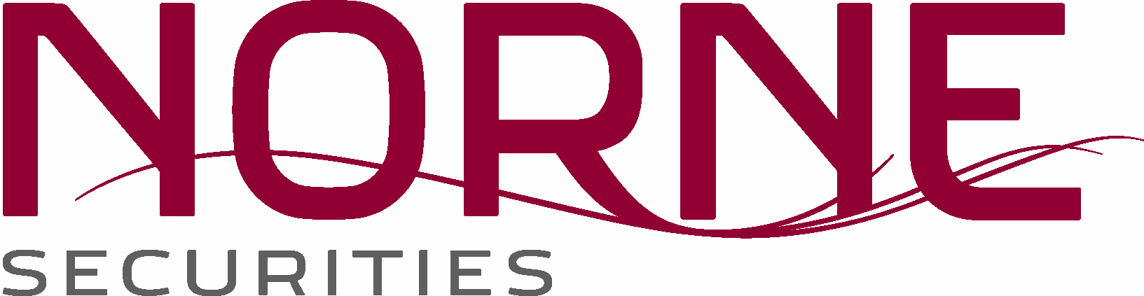 NORNE_logo_PMS.png
