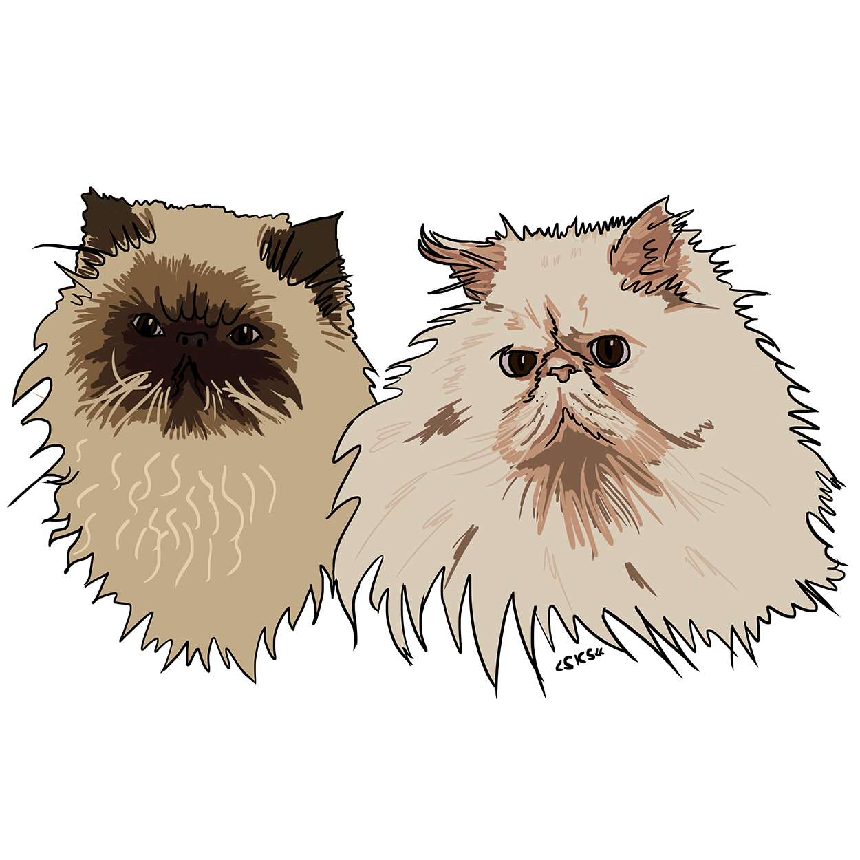 cats2 ig.png
