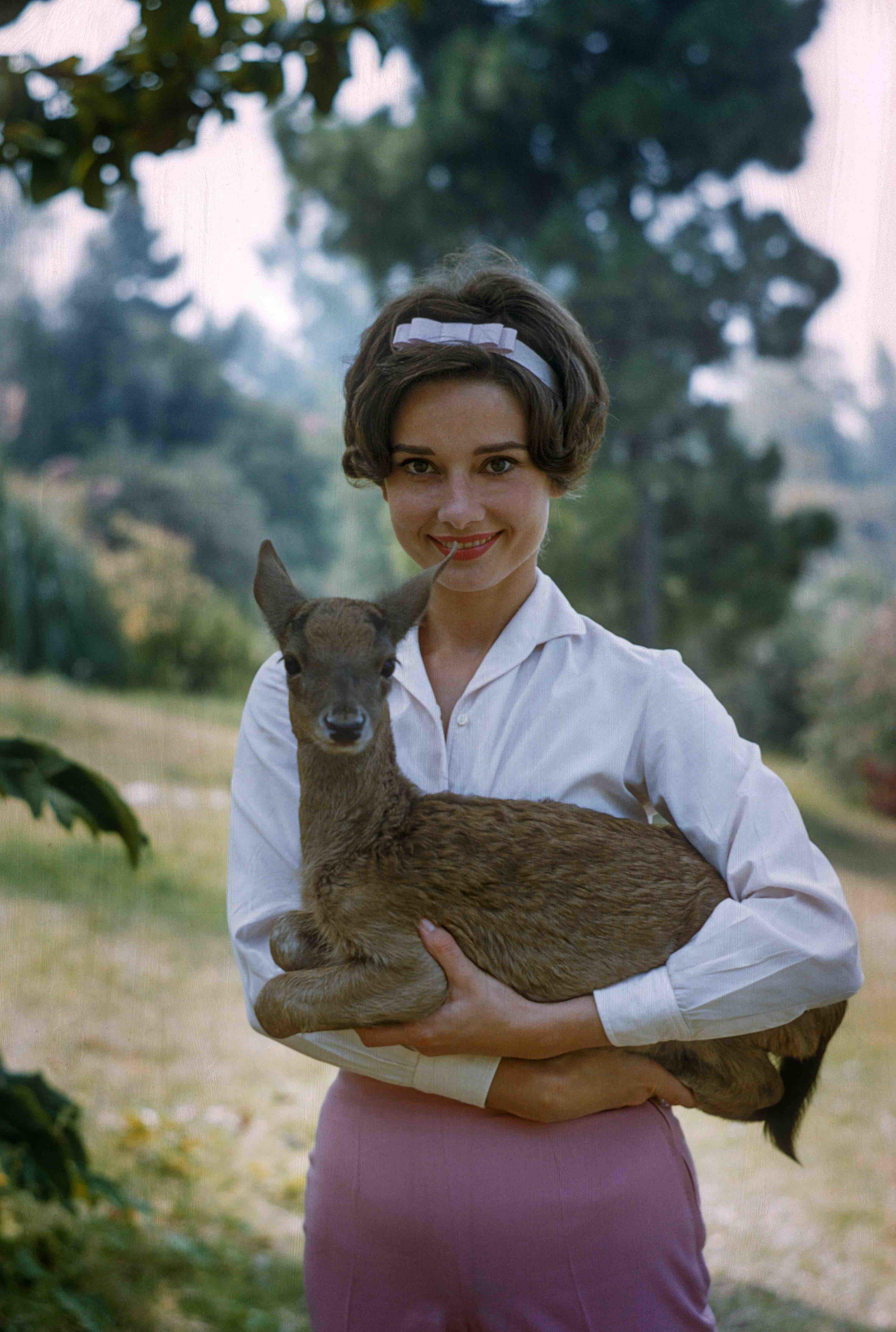Audrey Hepburn holds Ip, 1958