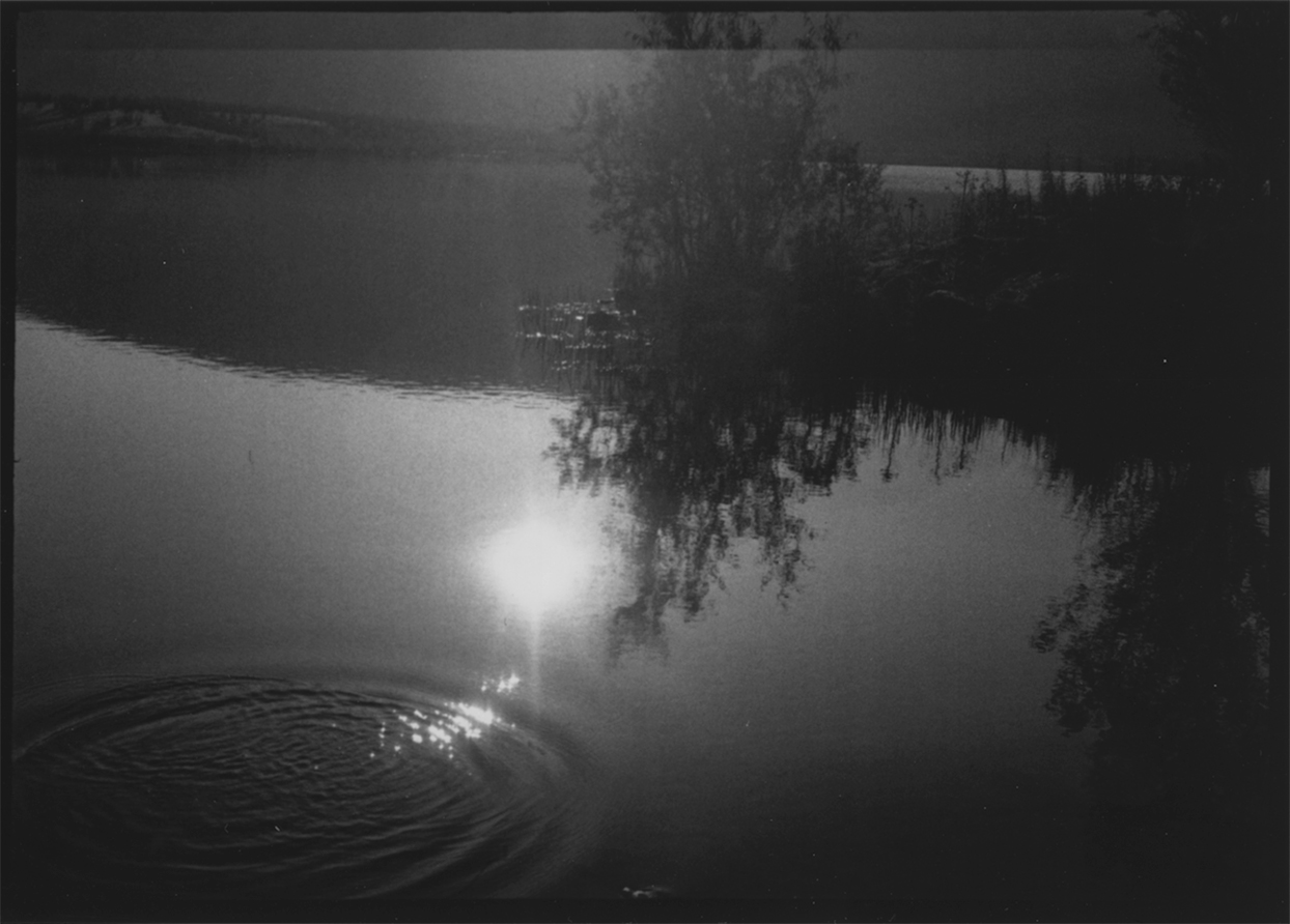 Untitled, from The PhotoDiaries of Mick Williamson