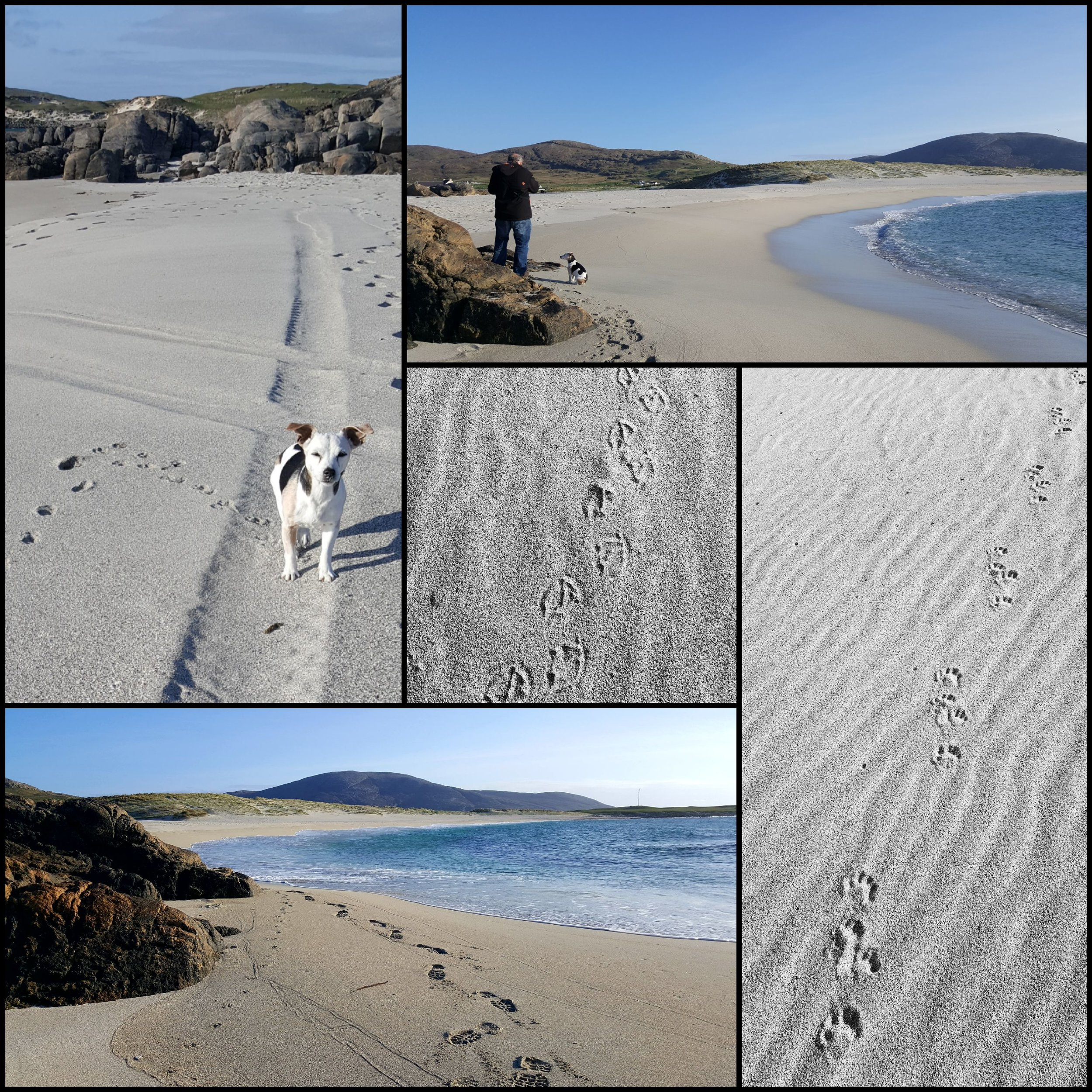 Assorted Footprints