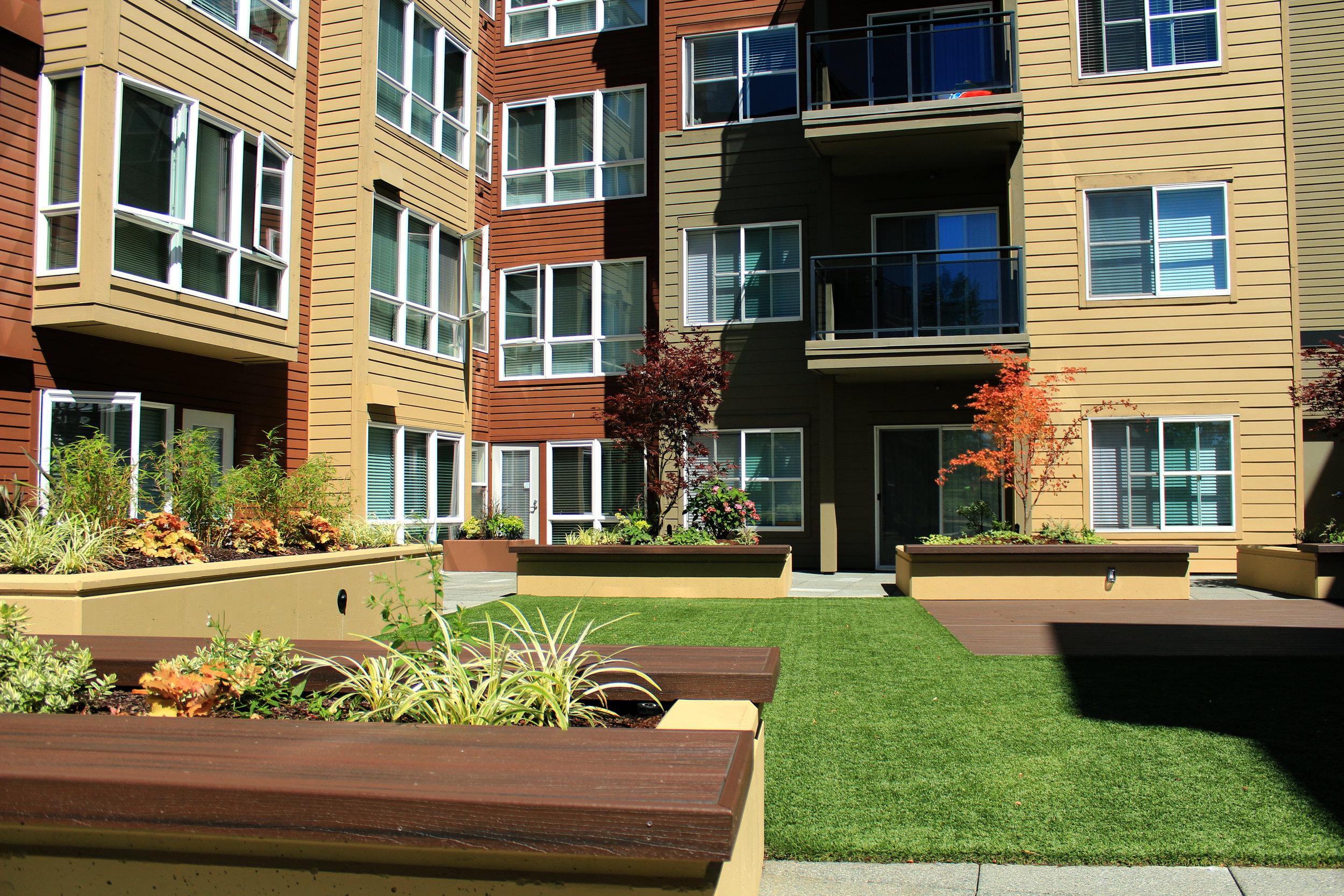 courtyard_grass.jpg