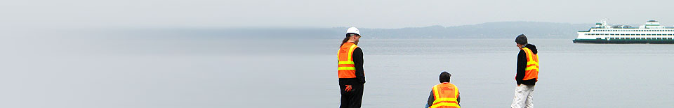 Visual & Intrusive Inspections -