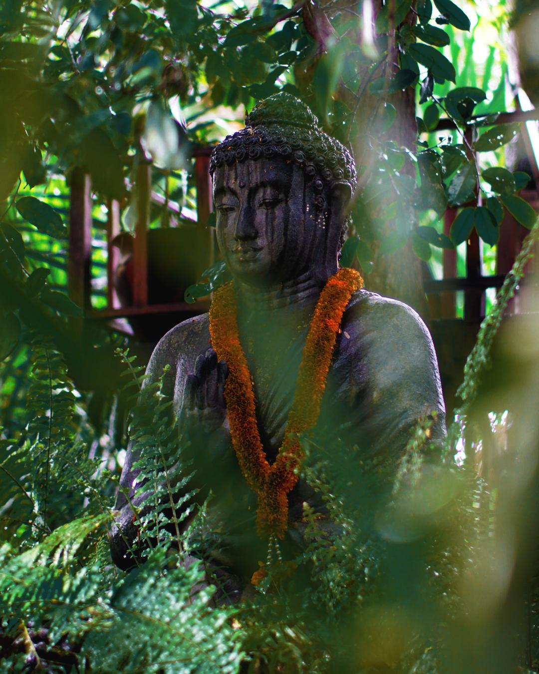 A Buddha at the Lewak coffee plantation, Ubud. Photo: Jake McCabe.
