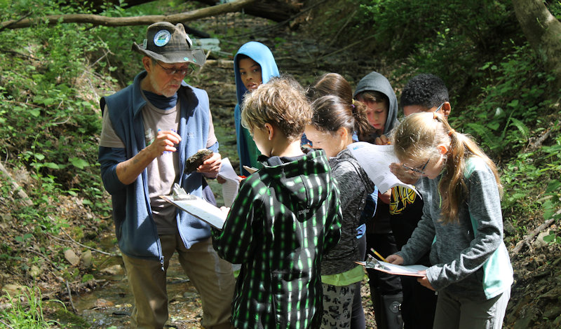 Montessori-Programs