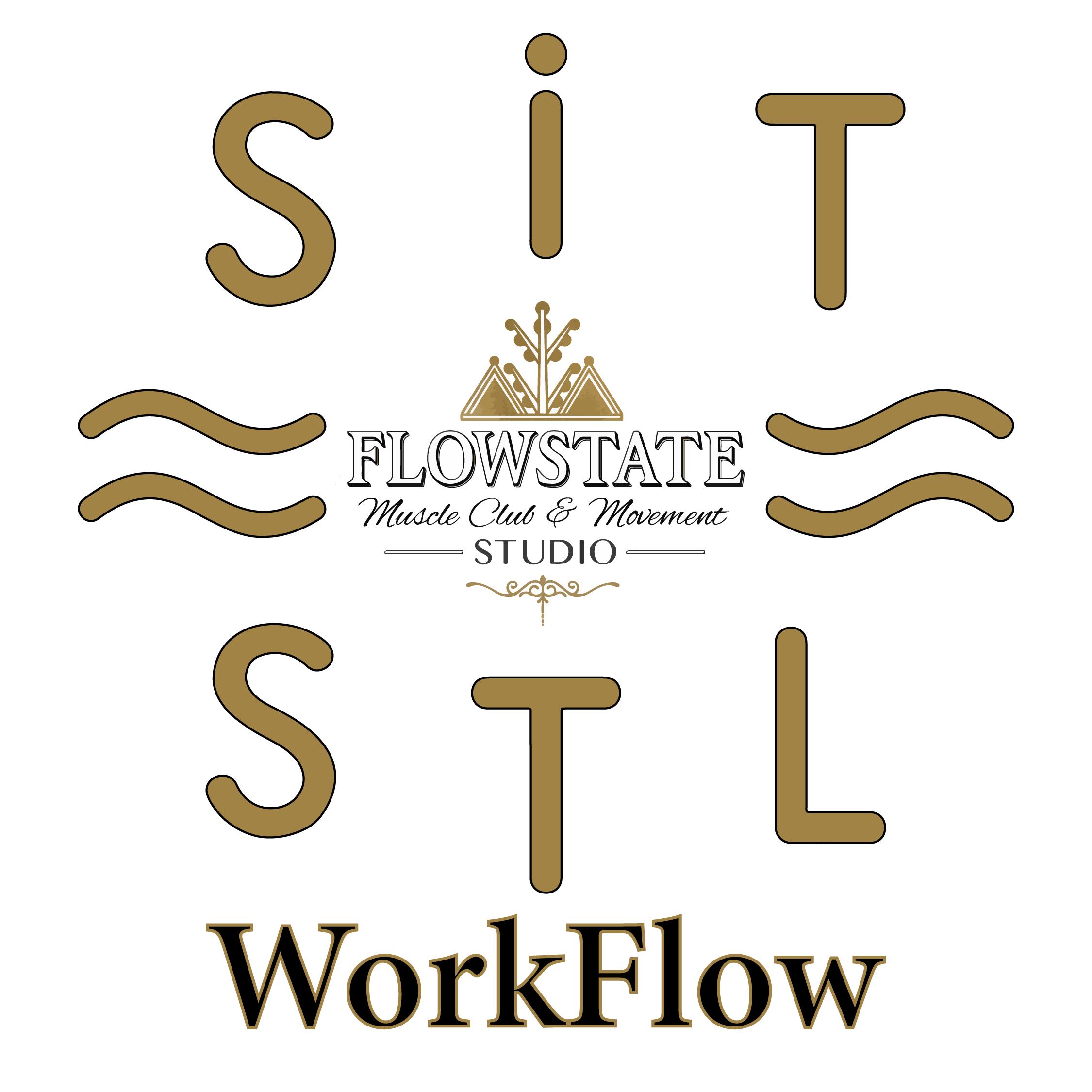 WorkFlow Logo4-01.png