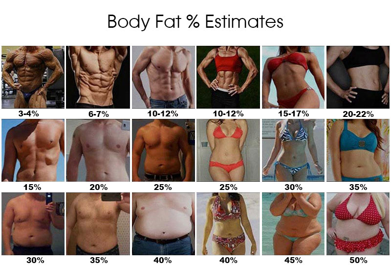 Body-Fat-Estimate-Photos.jpg