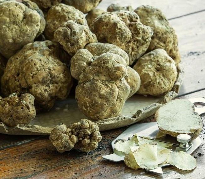 white truffles.jpg