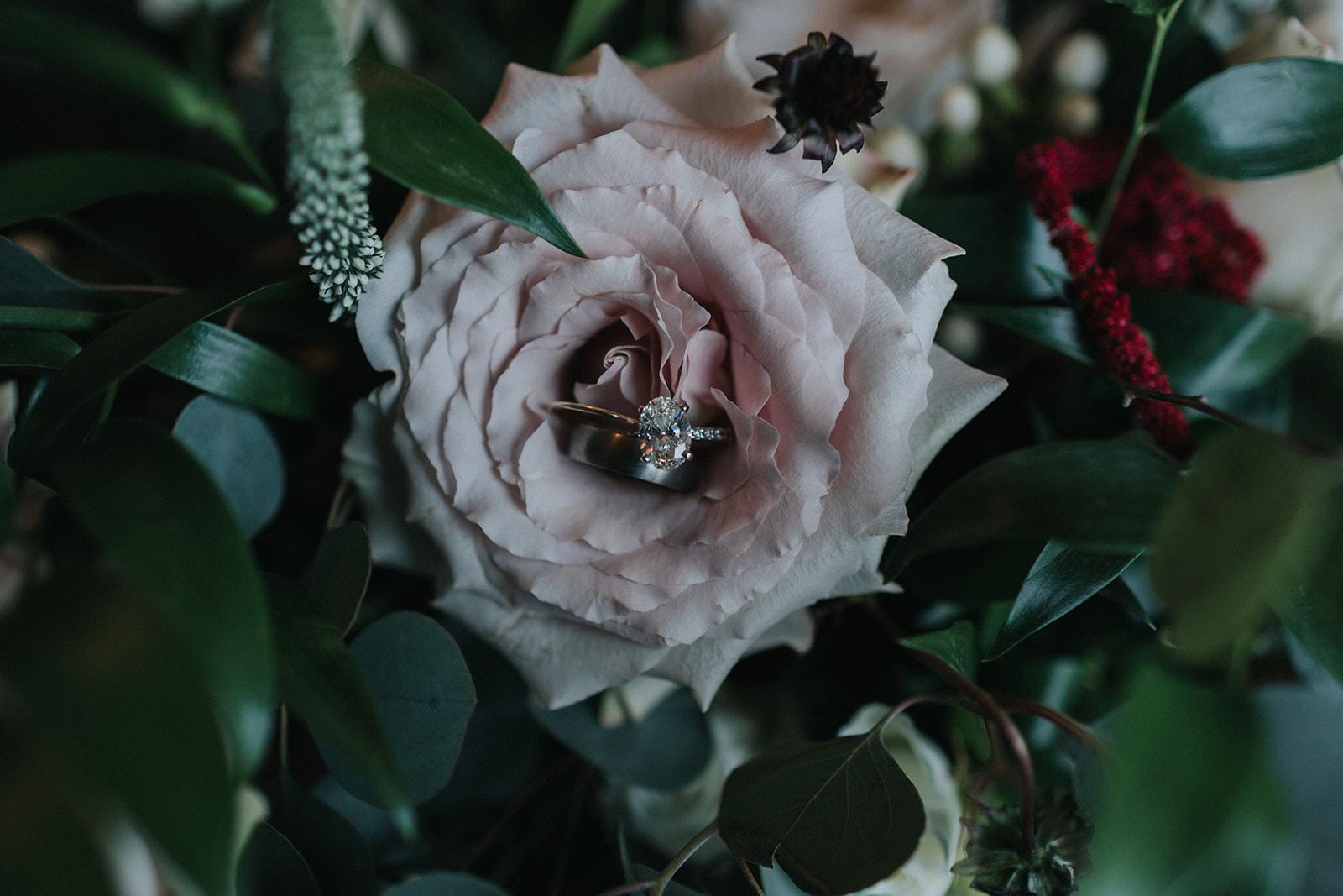 Gand Rapids Wedding Protea Rising2.jpg