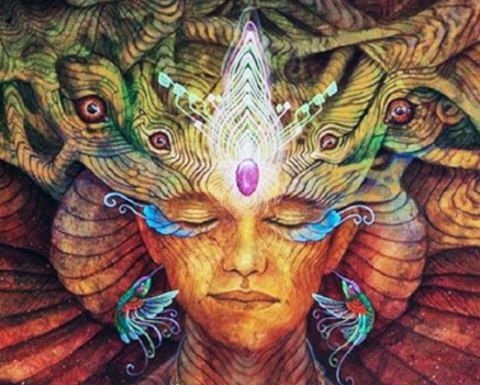 shamanic coaching.jpg