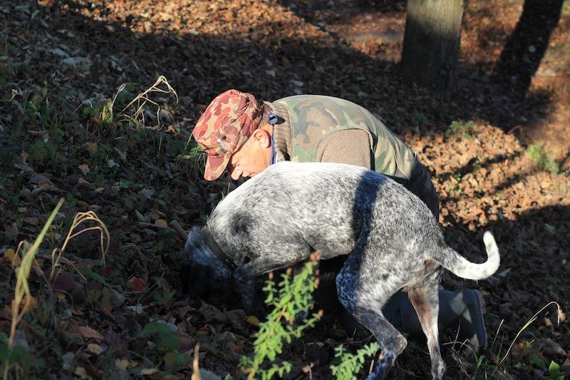 Truffle Hunting in Piedmont - MUNCHIES