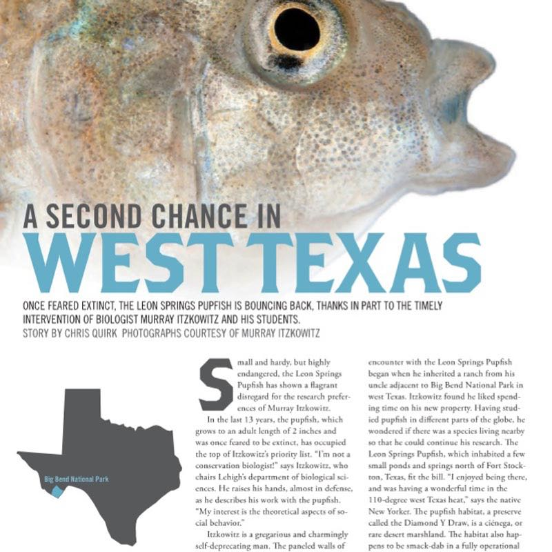 A Second Chance in West Texas ,  Lehigh Alumni Bulletin . Small and hardy, but highly endangered, the Leon Springs Pupfish has shown a flagrant disregard for the research preferences of Murray Itzkowitz...