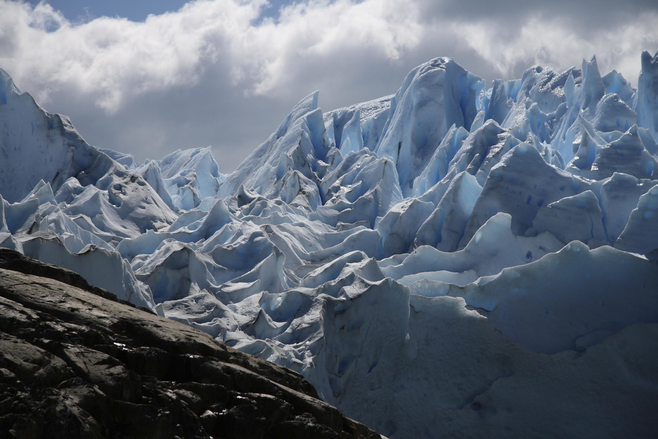 The carved edges of the glacier.. A skeletal tree. Birds in a row. Pebbles on the shore.