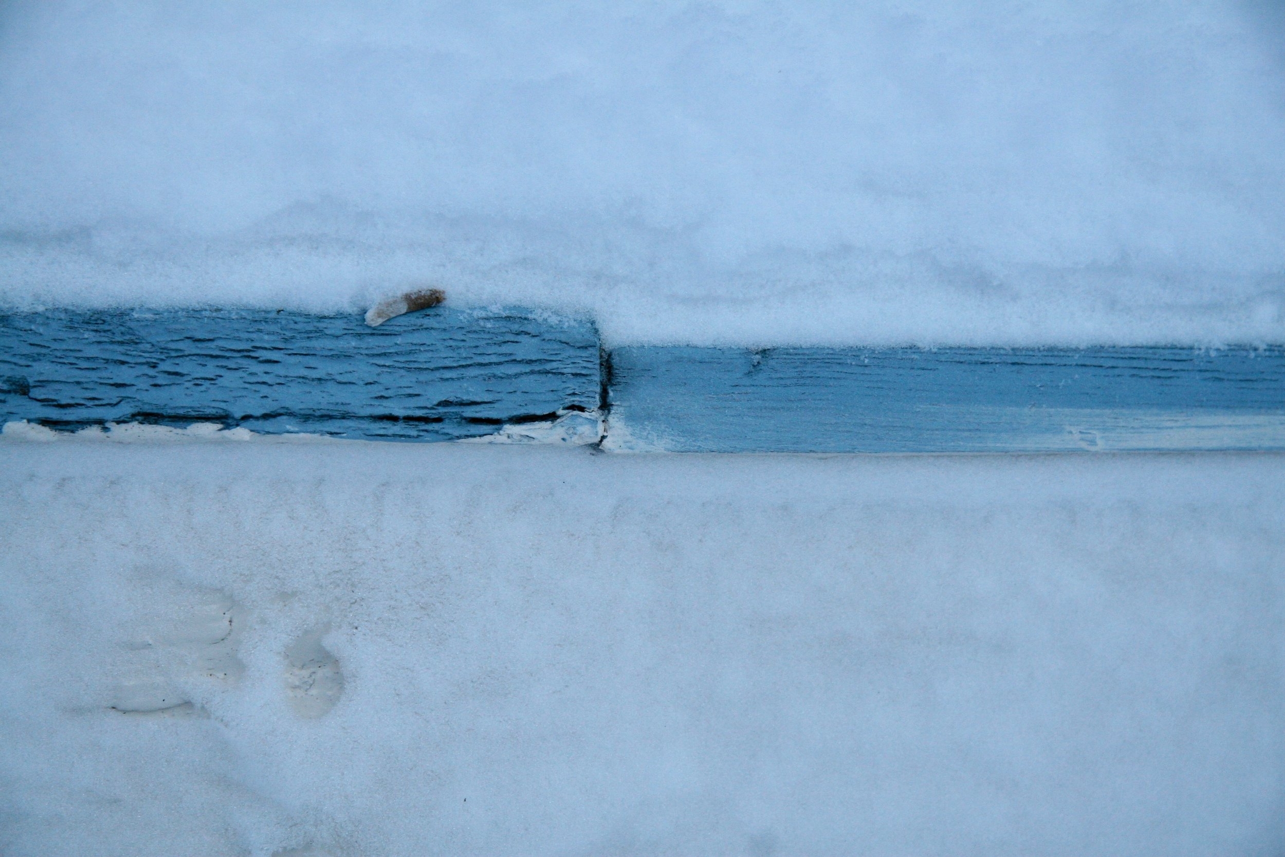 White snow, blue line