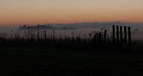 Mist across the field.jpg