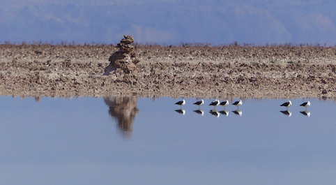 The salt pan (salar) of the Atacama, south of San Pedro de Atacama