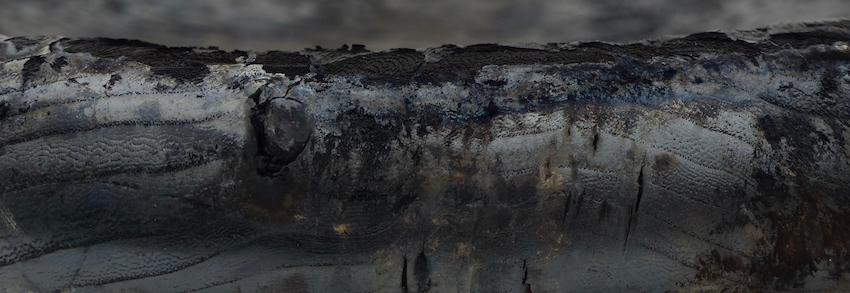 The edge of the charred sphere