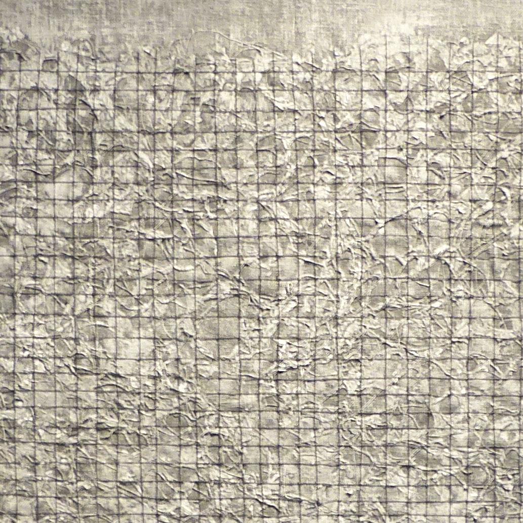 AITN Arctic Fence, tray frame, 50cmx50cm, SOLD (detail).jpg